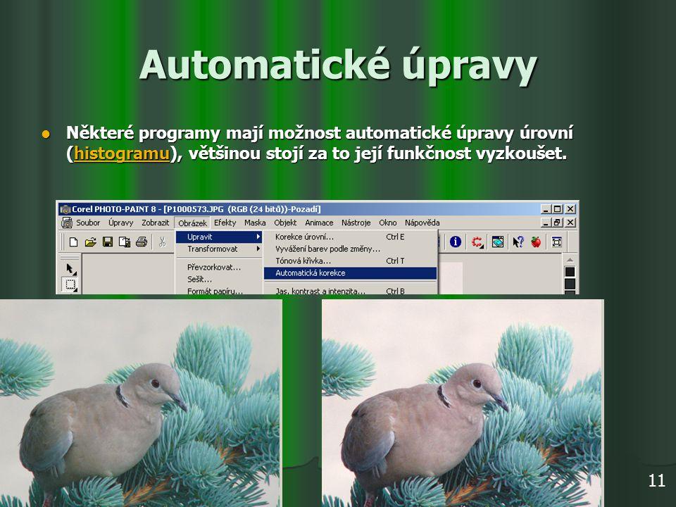 Automatické úpravy Některé programy mají možnost automatické úpravy úrovní (histogramu), většinou stojí za to její funkčnost vyzkoušet. Některé progra