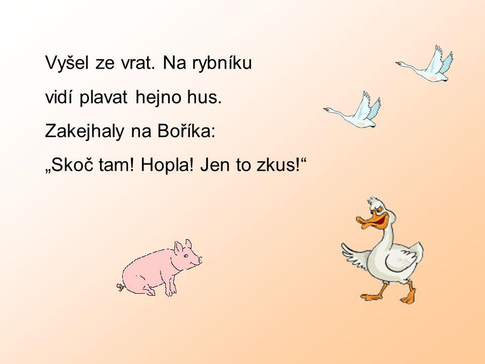 """Vyšel ze vrat. Na rybníku vidí plavat hejno hus. Zakejhaly na Boříka: """"Skoč tam! Hopla! Jen to zkus!"""""""