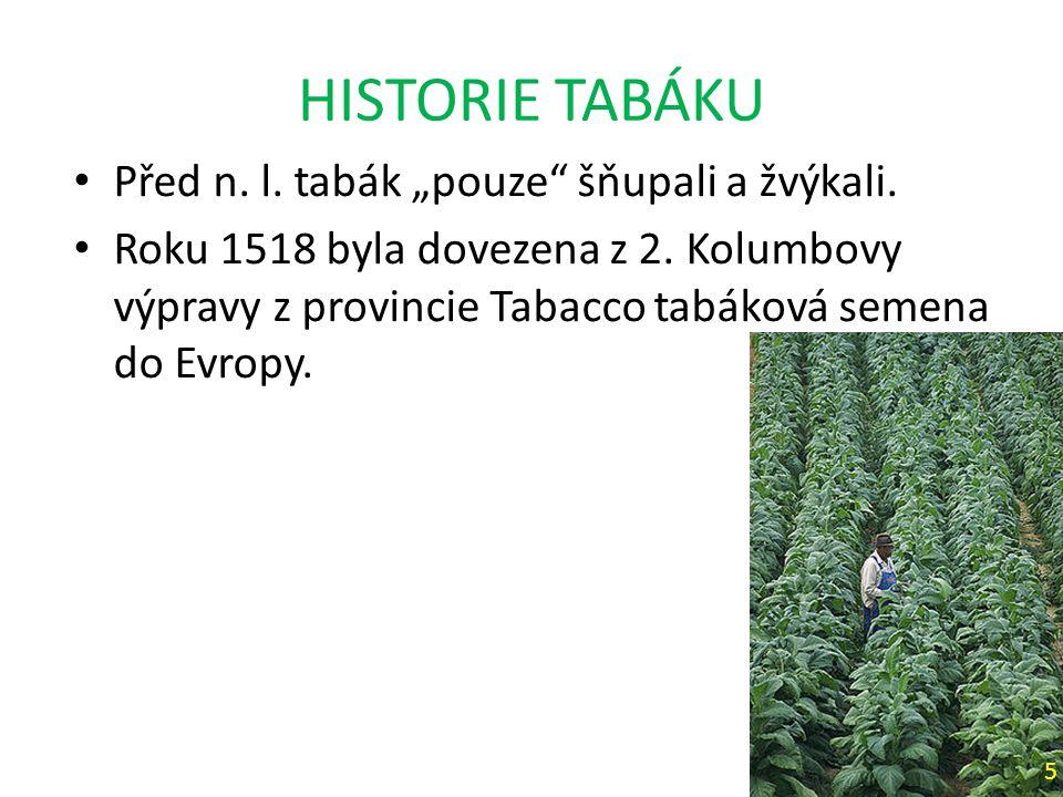"""HISTORIE TABÁKU Před n.l. tabák """"pouze šňupali a žvýkali."""