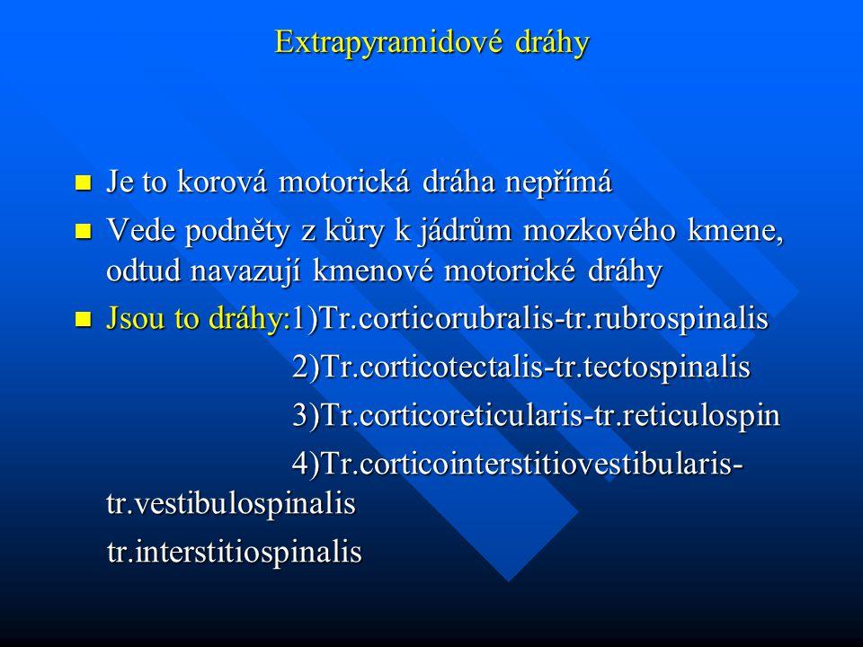 Extrapyramidové dráhy Je to korová motorická dráha nepřímá Je to korová motorická dráha nepřímá Vede podněty z kůry k jádrům mozkového kmene, odtud navazují kmenové motorické dráhy Vede podněty z kůry k jádrům mozkového kmene, odtud navazují kmenové motorické dráhy Jsou to dráhy:1)Tr.corticorubralis-tr.rubrospinalis Jsou to dráhy:1)Tr.corticorubralis-tr.rubrospinalis 2)Tr.corticotectalis-tr.tectospinalis 2)Tr.corticotectalis-tr.tectospinalis 3)Tr.corticoreticularis-tr.reticulospin 3)Tr.corticoreticularis-tr.reticulospin 4)Tr.corticointerstitiovestibularis- tr.vestibulospinalis 4)Tr.corticointerstitiovestibularis- tr.vestibulospinalis tr.interstitiospinalis tr.interstitiospinalis