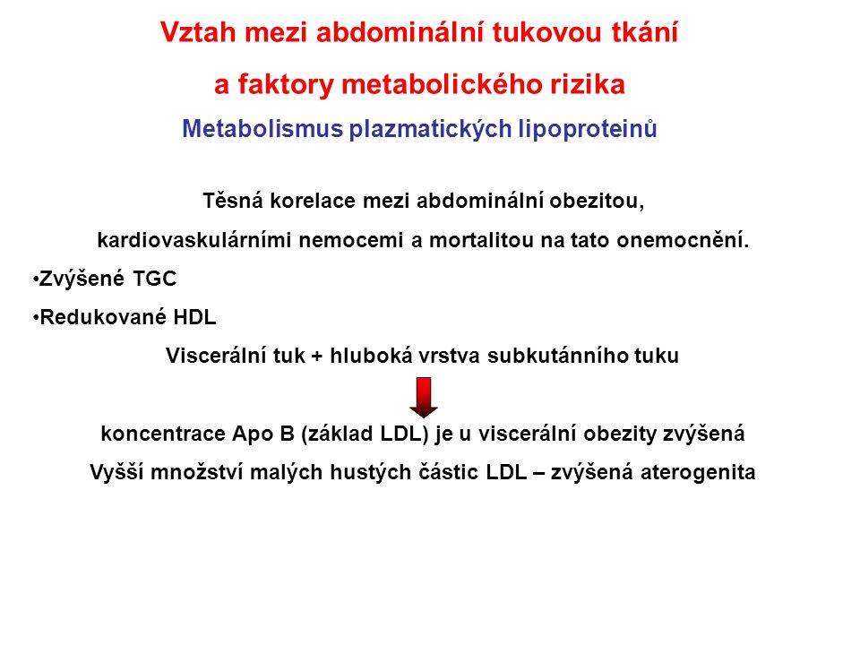 Vztah mezi abdominální tukovou tkání a faktory metabolického rizika Metabolismus plazmatických lipoproteinů Těsná korelace mezi abdominální obezitou,