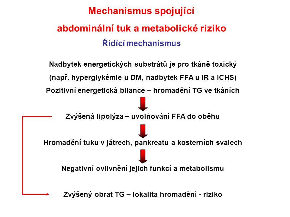 Mechanismus spojující abdominální tuk a metabolické riziko Řídící mechanismus Nadbytek energetických substrátů je pro tkáně toxický (např. hyperglykém