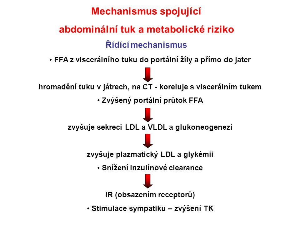 Mechanismus spojující abdominální tuk a metabolické riziko Řídící mechanismus FFA z viscerálního tuku do portální žíly a přímo do jater hromadění tuku