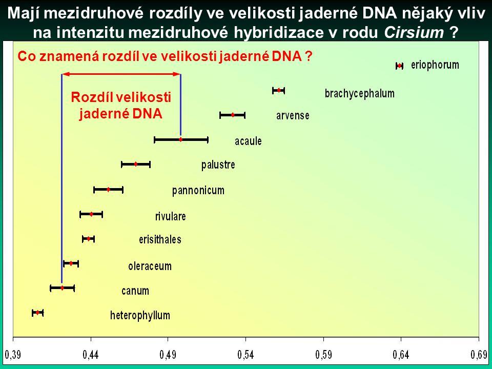 Mají mezidruhové rozdíly ve velikosti jaderné DNA nějaký vliv na intenzitu mezidruhové hybridizace v rodu Cirsium ? Co znamená rozdíl ve velikosti jad