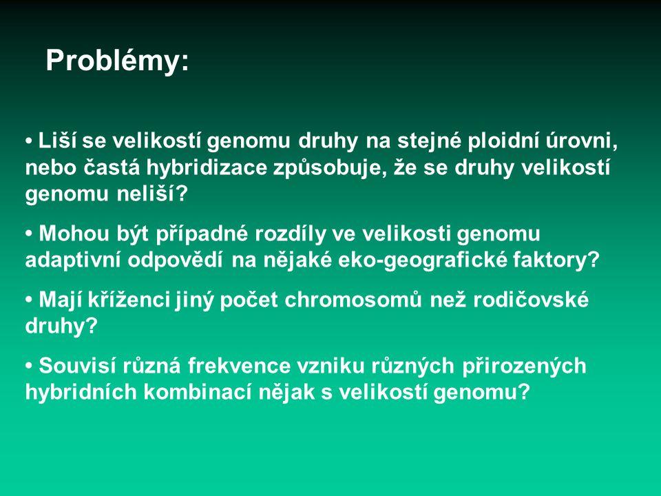 Problémy: Liší se velikostí genomu druhy na stejné ploidní úrovni, nebo častá hybridizace způsobuje, že se druhy velikostí genomu neliší? Mohou být př