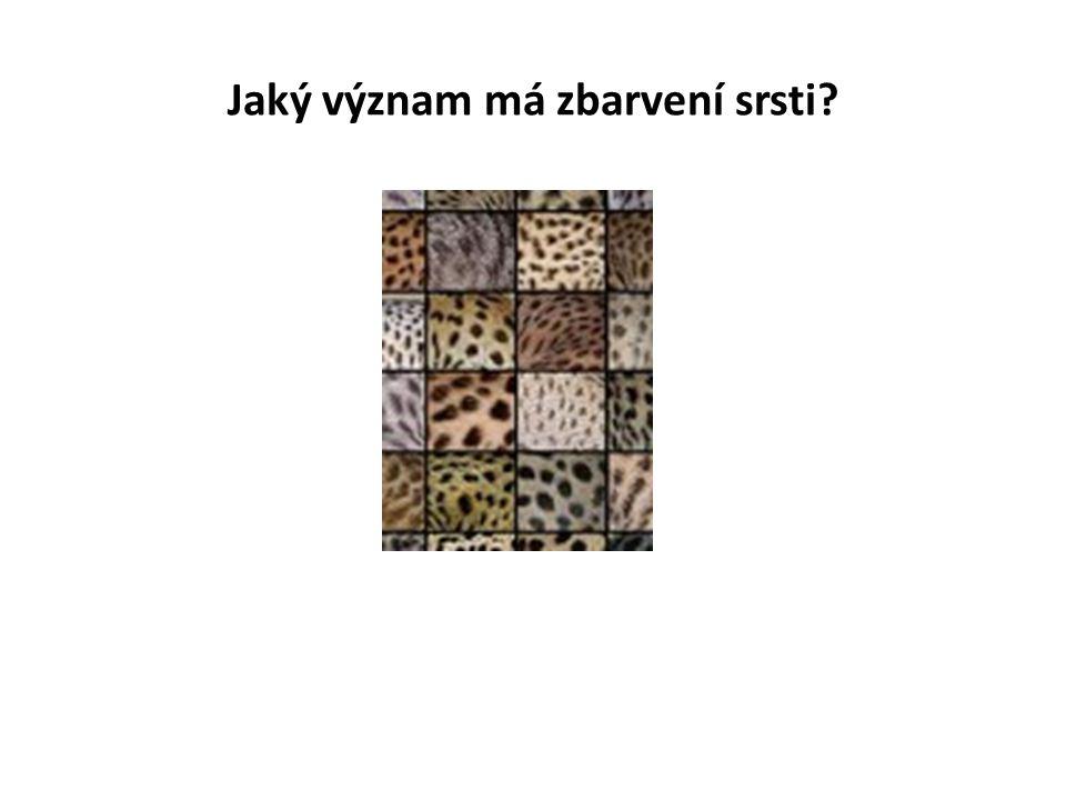 Jaký význam má zbarvení srsti?