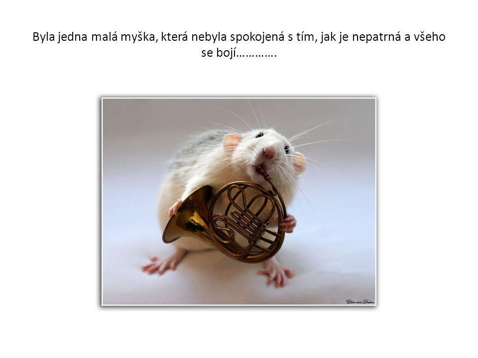 Byla jedna malá myška, která nebyla spokojená s tím, jak je nepatrná a všeho se bojí………….
