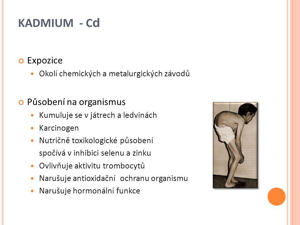 KADMIUM - C d Expozice Okolí chemických a metalurgických závodů Působení na organismus Kumuluje se v játrech a ledvinách Karcinogen Nutričně toxikolog