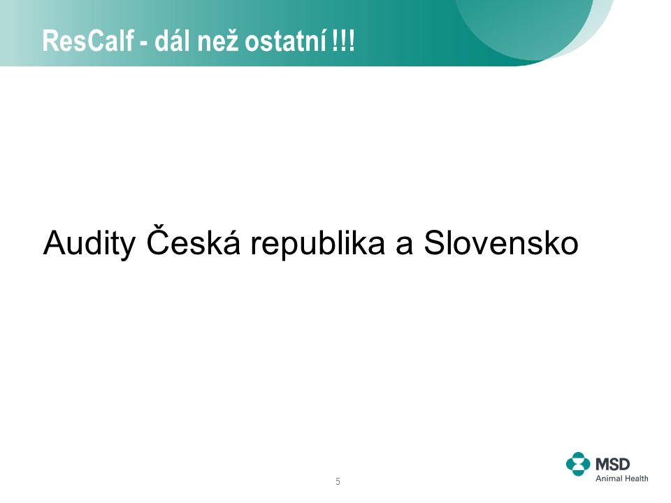 5 ResCalf - dál než ostatní !!! Audity Česká republika a Slovensko