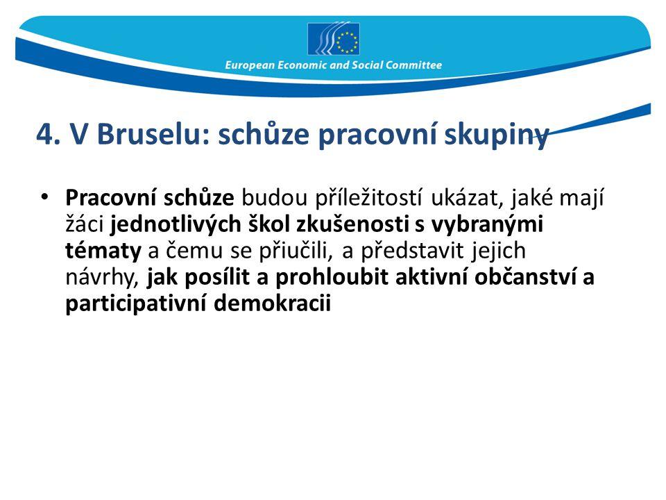 4. V Bruselu: schůze pracovní skupiny Pracovní schůze budou příležitostí ukázat, jaké mají žáci jednotlivých škol zkušenosti s vybranými tématy a čemu