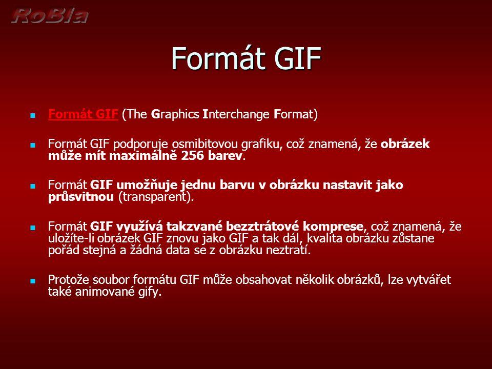 Formát GIF Formát GIF (The Graphics Interchange Format) Formát GIF podporuje osmibitovou grafiku, což znamená, že obrázek může mít maximálně 256 barev