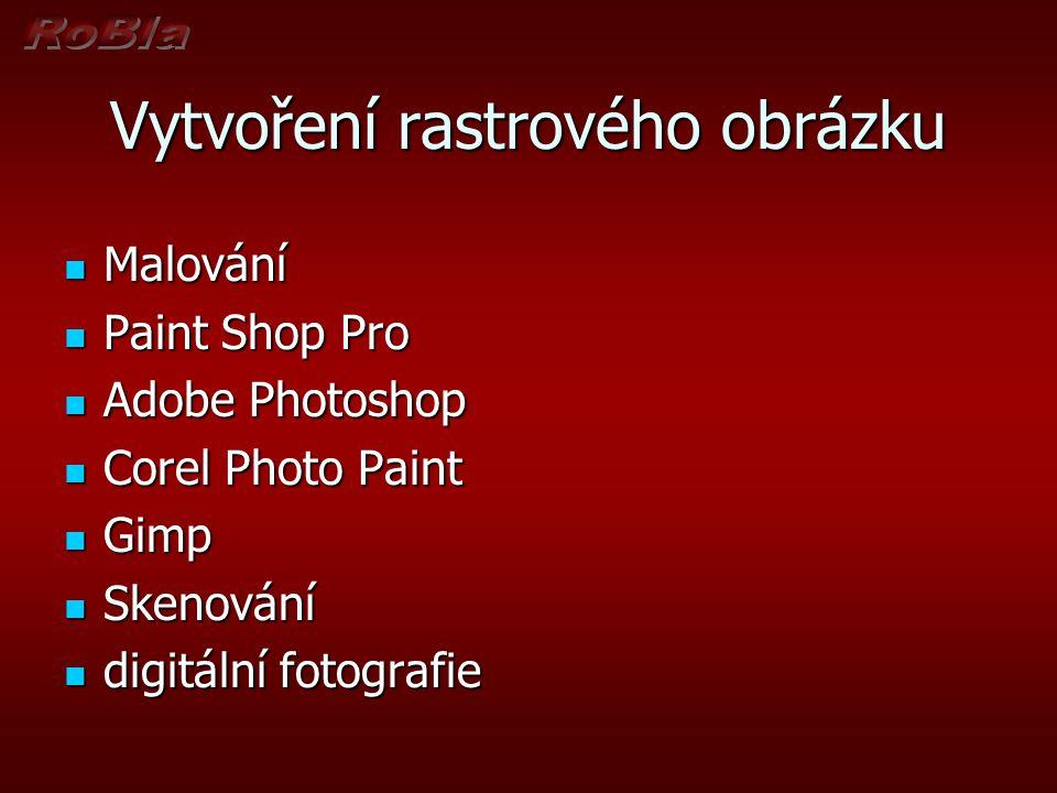 Vytvoření rastrového obrázku Malování Malování Paint Shop Pro Paint Shop Pro Adobe Photoshop Adobe Photoshop Corel Photo Paint Corel Photo Paint Gimp