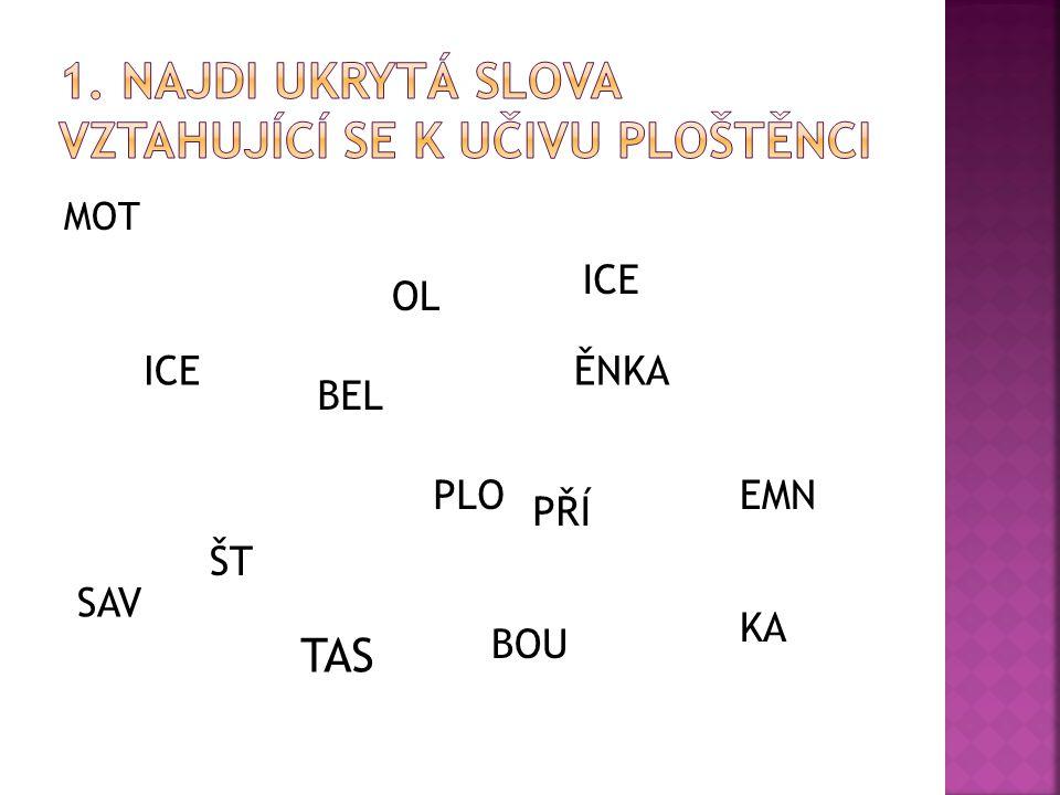 MOT OL ICE PLO ŠT ĚNKA TAS EMN ICE BOU BEL PŘÍ SAV KA