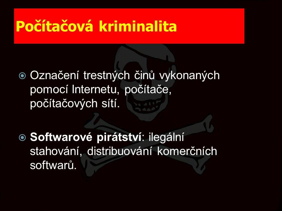 Počítačová kriminalita  Označení trestných činů vykonaných pomocí Internetu, počítače, počítačových sítí.  Softwarové pirátství: ilegální stahování,