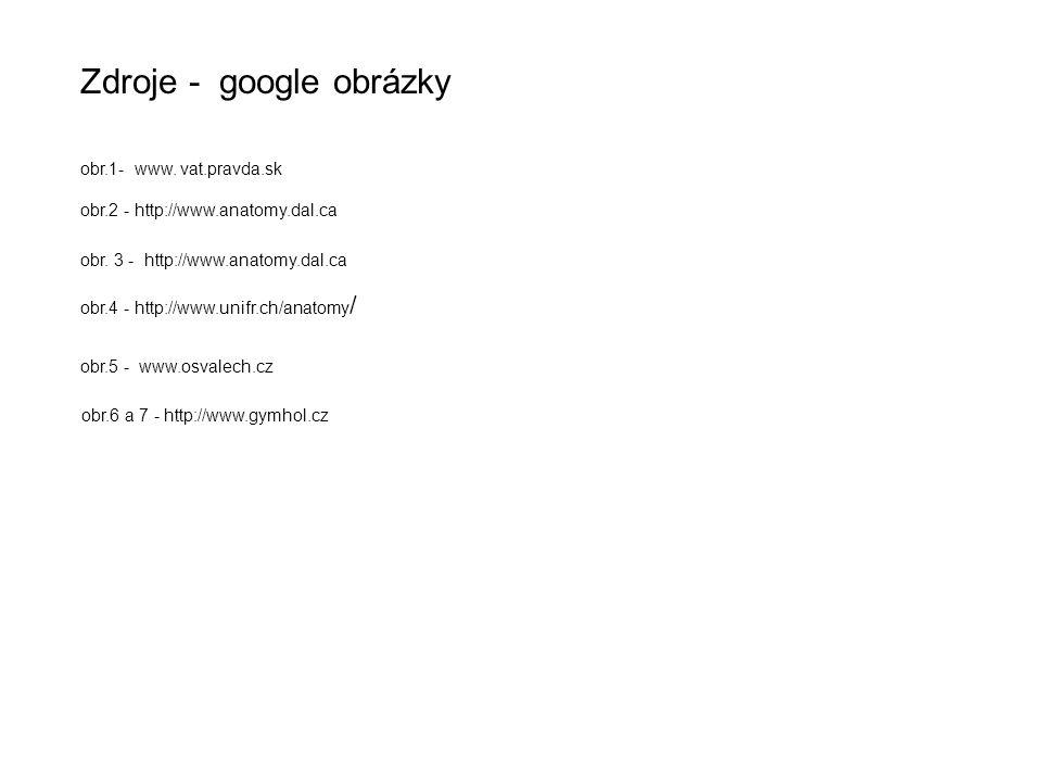 obr.1- www. vat.pravda.sk Zdroje - google obrázky obr.5 - www.osvalech.cz obr.6 a 7 - http://www.gymhol.cz obr.2 - http://www.anatomy.dal.ca obr. 3 -