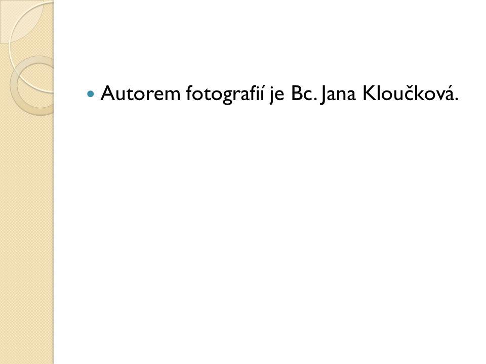 Použité zdroje: Vypracovala, pokud není uvedeno jinak, Bc. Jana Kloučková V Obříství, březen 2013