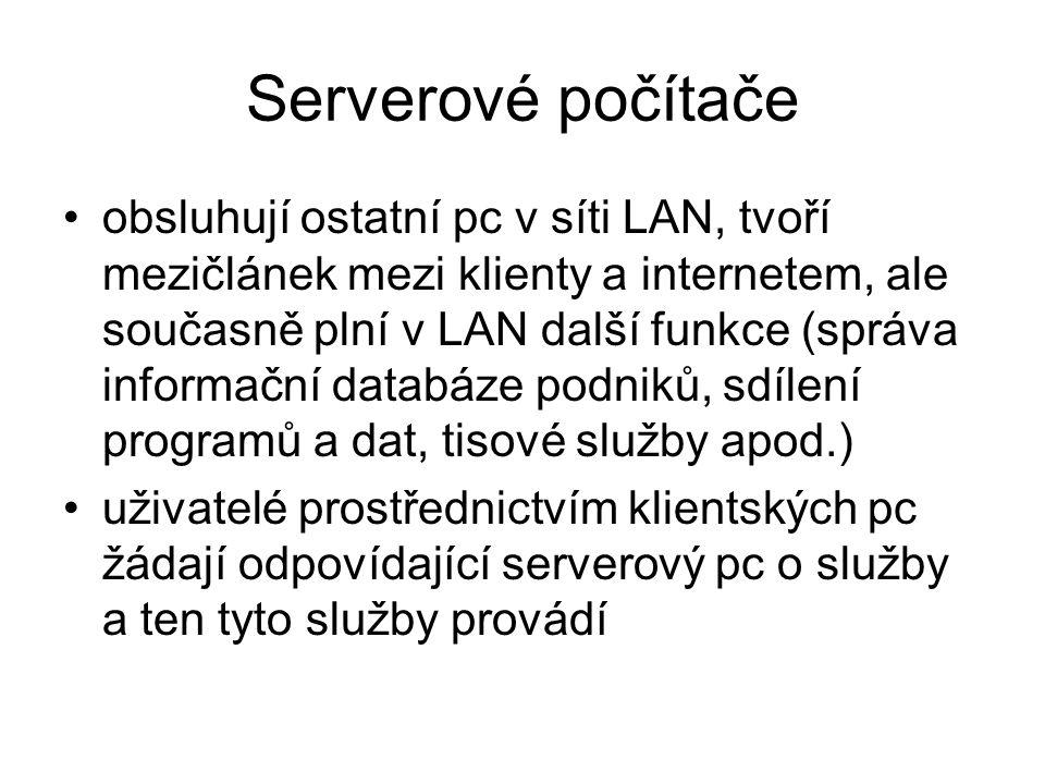 Klienti zpravidla samostatné pc, ale také terminály bez vlastní pevné paměti, či výkonného pc – pracovní stanice pomocí klientských pc komunikují uživatelé s internetem, přičemž připojení k síti LAN zajišťuje tzv.