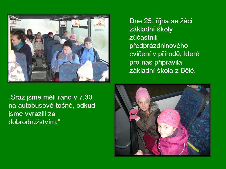 Cvičení v přírodě Říjen 2011, Bělá Vytvořila: Mgr. Irena Juchelková