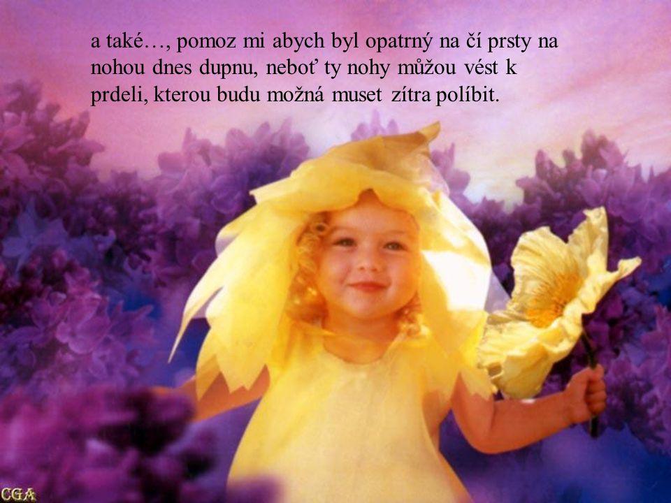 Dodej mi prosím klidu k tomu, abych souhlasil s tím, co nemohu změnit; odvahu k tomu, abych změnil to, s čím nemohu souhlasit; a rozum k tomu, abych dokázal ukrýt těla těch, které jsem dnes zavraždil, protože mě nasrali !!!