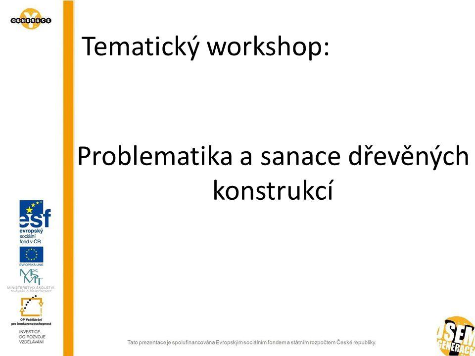 Problematika a sanace dřevěných konstrukcí Tematický workshop:
