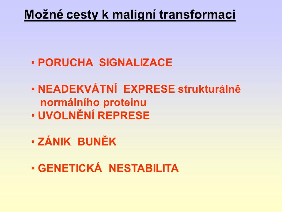 dsRNA (dlouhá) shRNA sRNA siRNA RISC Degradace transkriptu, Blok translace DICER mikroRNA (1) (2)