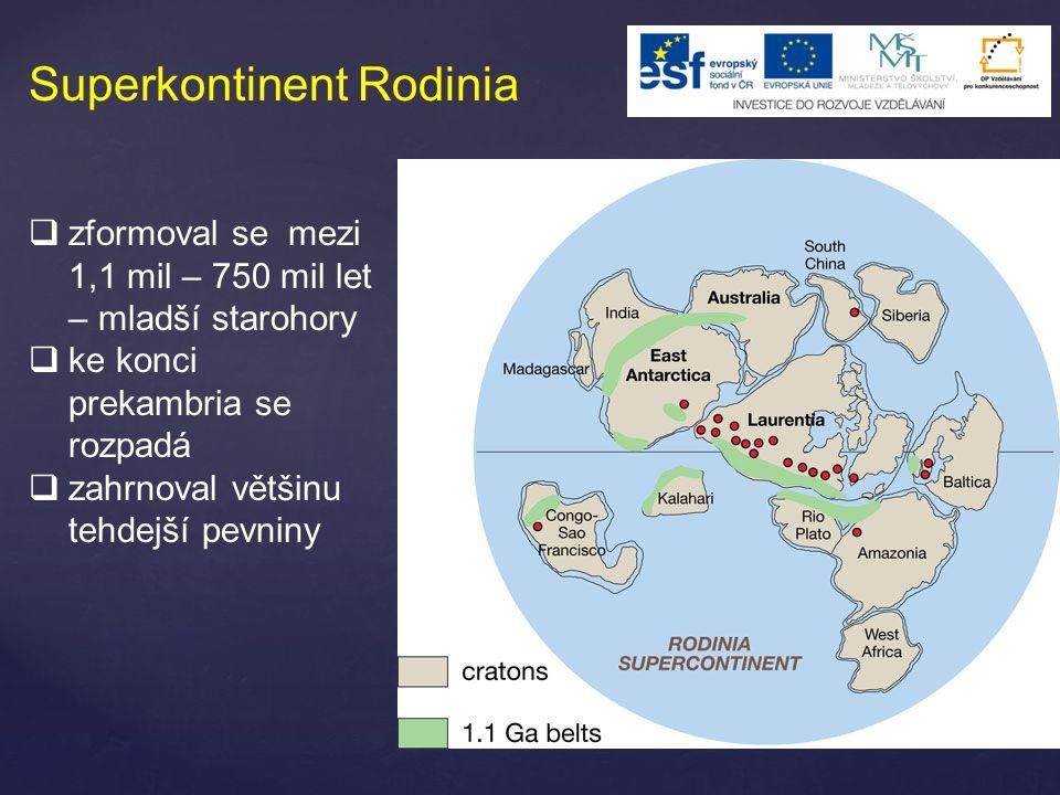 Superkontinent Rodinia  zformoval se mezi 1,1 mil – 750 mil let – mladší starohory  ke konci prekambria se rozpadá  zahrnoval většinu tehdejší pevn