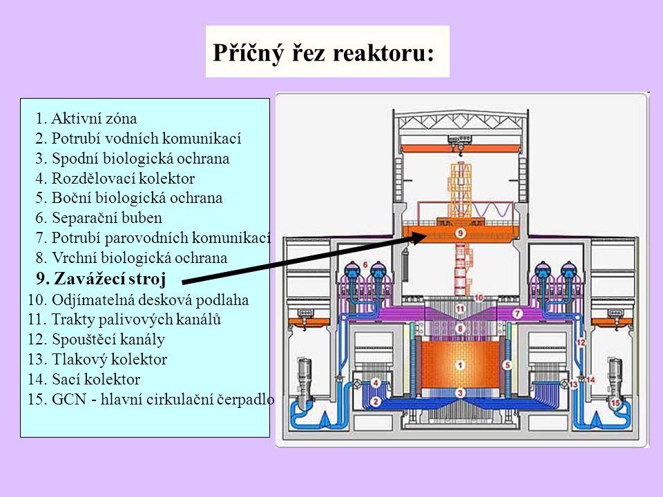 1. Aktivní zóna 2. Potrubí vodních komunikací 3. Spodní biologická ochrana 4. Rozdělovací kolektor 5. Boční biologická ochrana 6. Separační buben 7. P