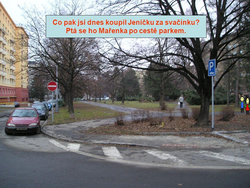 Co pak jsi dnes koupil Jeníčku za svačinku Ptá se ho Mařenka po cestě parkem.