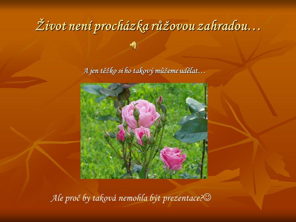 Život není procházka růžovou zahradou… A jen těžko si ho takový můžeme udělat… Ale proč by taková nemohla být prezentace
