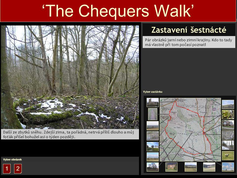 1 'The Chequers Walk' Další ze zbytků sněhu.