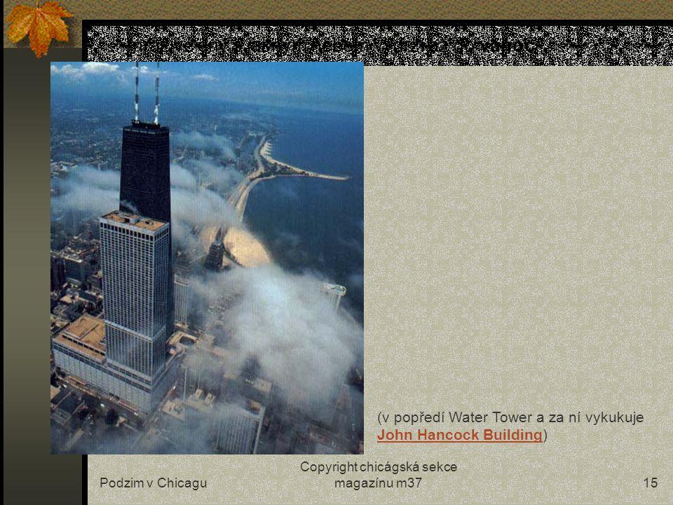 Podzim v Chicagu Copyright chicágská sekce magazínu m3714 …stromy bez listí působí v Grand Parku poněkud bezútěšně… (Amoco Building – druhá nejvyšší budova v Chicagu)nejvyšší budova