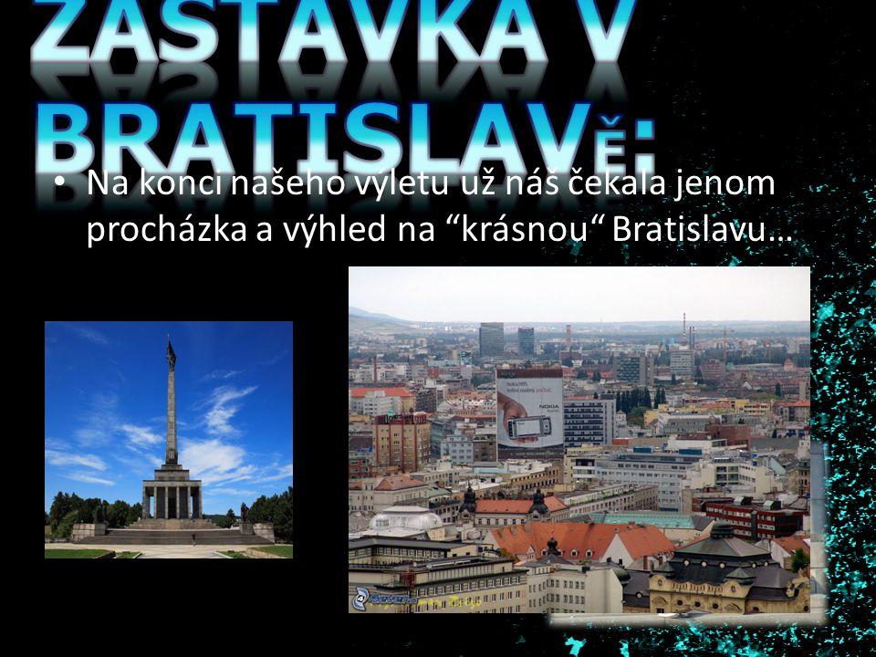 """Na konci našeho výletu už náš čekala jenom procházka a výhled na """"krásnou"""" Bratislavu…"""