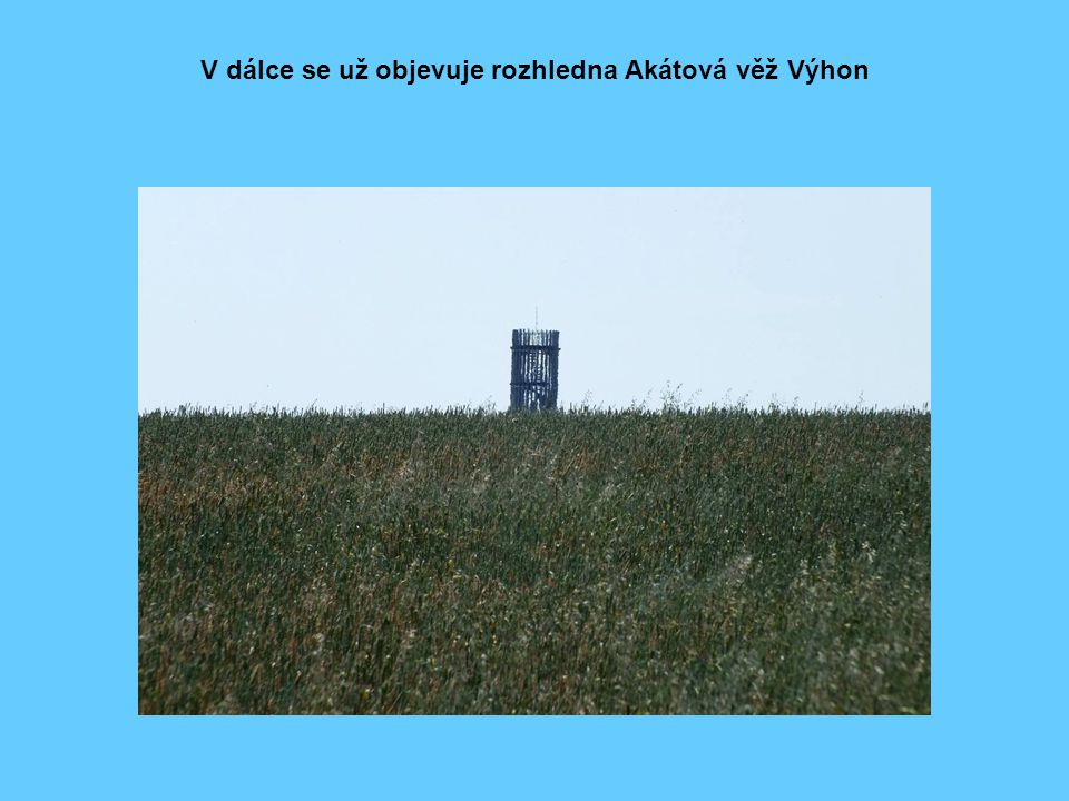 Rozhledna Akátová věž Výhon v celé své kráse s detailem vchodu