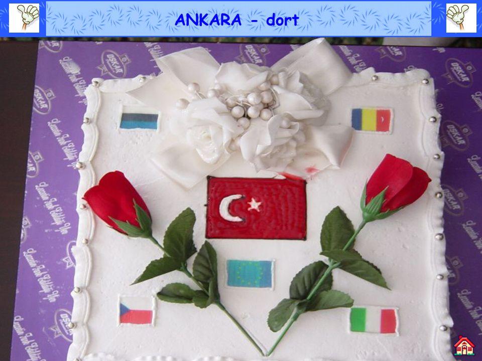 ANKARA - dort