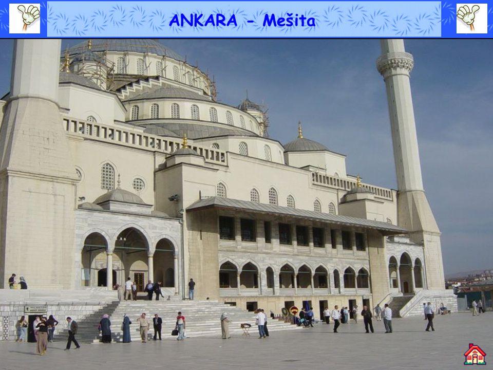 ISTANBUL – Pohled na Mešitu
