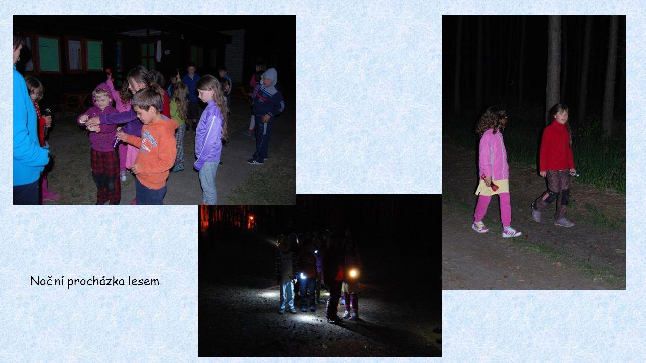 Noční procházka lesem