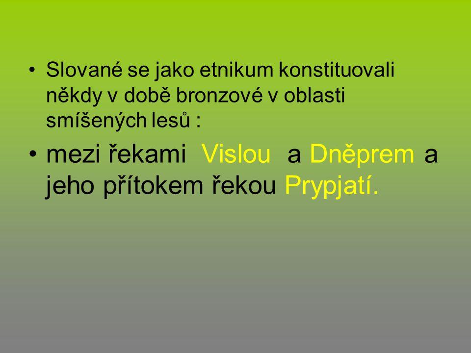 Slované se jako etnikum konstituovali někdy v době bronzové v oblasti smíšených lesů : mezi řekami Vislou a Dněprem a jeho přítokem řekou Prypjatí.