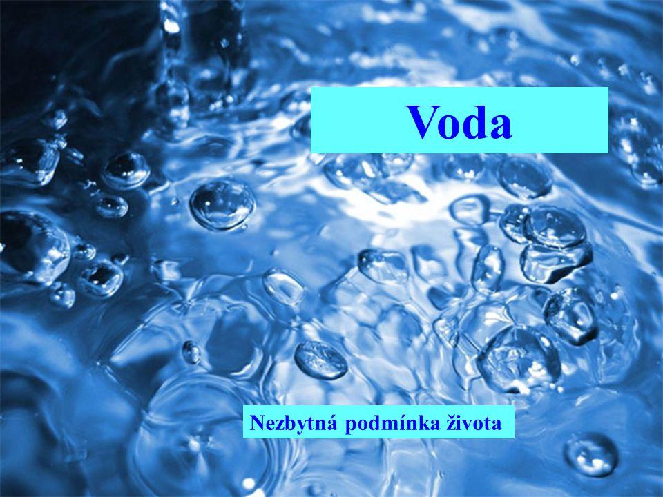 Voda Nezbytná podmínka života
