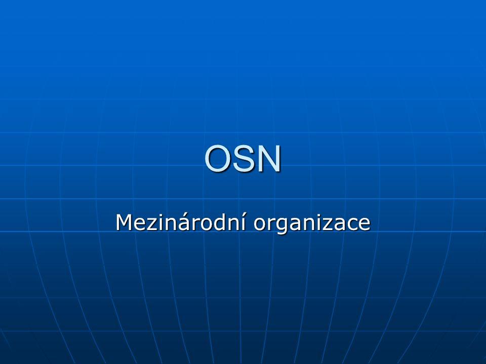 OSN Mezinárodní organizace