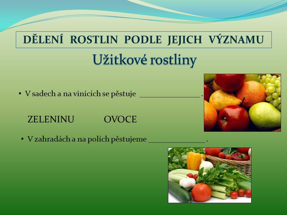 DĚLENÍ ROSTLIN PODLE JEJICH VÝZNAMU V sadech a na vinicích se pěstuje _______________.