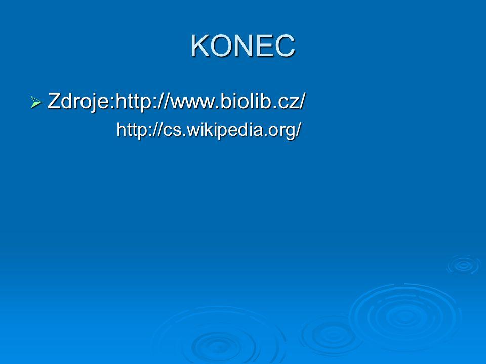 KONEC  Zdroje:http://www.biolib.cz/ http://cs.wikipedia.org/ http://cs.wikipedia.org/