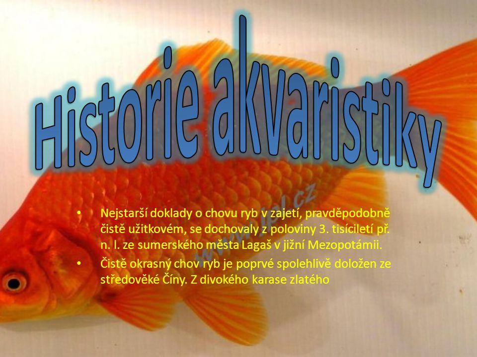 Nejstarší doklady o chovu ryb v zajetí, pravděpodobně čistě užitkovém, se dochovaly z poloviny 3.
