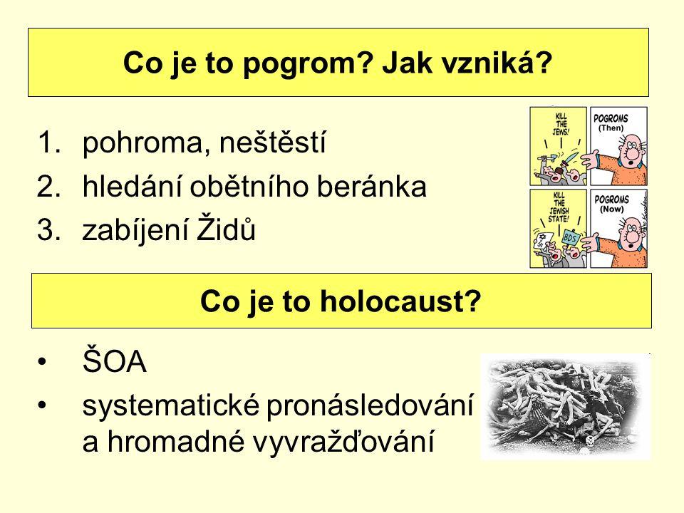 1.pohroma, neštěstí 2.hledání obětního beránka 3.zabíjení Židů ŠOA systematické pronásledování a hromadné vyvražďování Co je to pogrom? Jak vzniká? Co