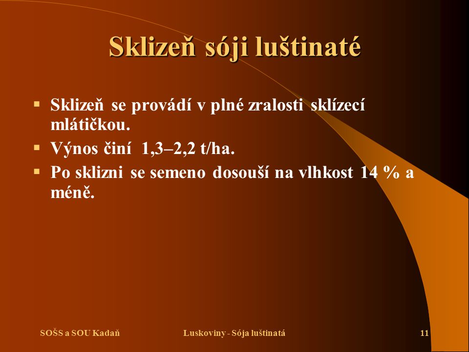 SOŠS a SOU KadaňLuskoviny - Sója luštinatá11 Sklizeň sóji luštinaté  Sklizeň se provádí v plné zralosti sklízecí mlátičkou.  Výnos činí 1,3–2,2 t/ha