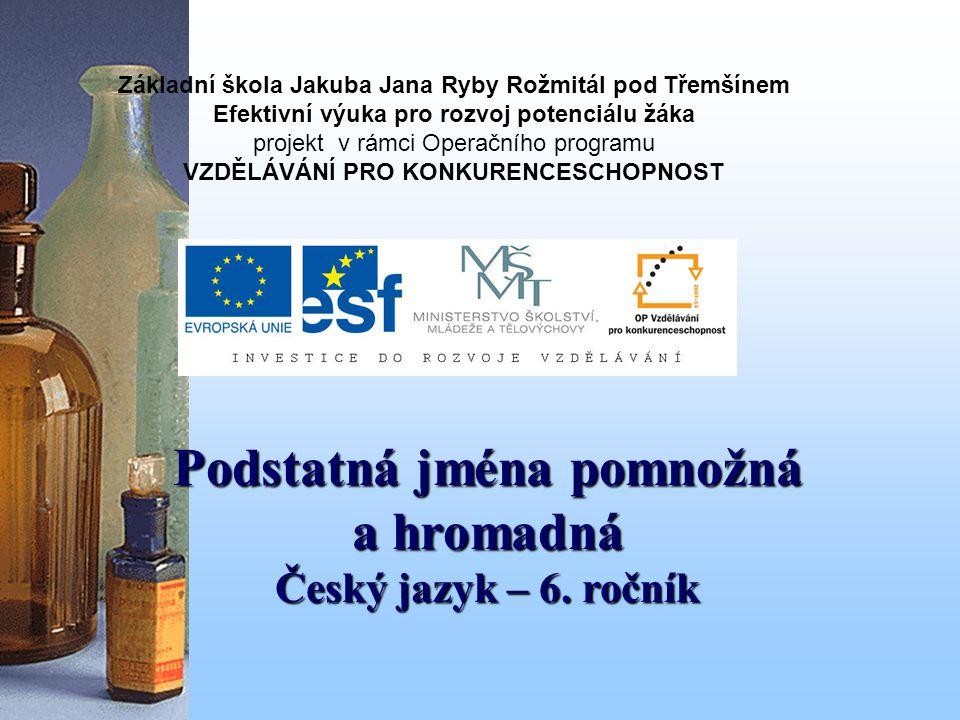 Podstatná jména pomnožná a hromadná 6.ročník ZŠ Použitý software: držitel licence - ZŠ J.