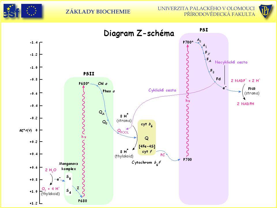 Diagram Z-schéma