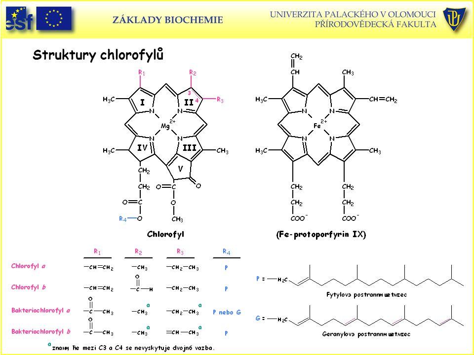 Struktury chlorofylů