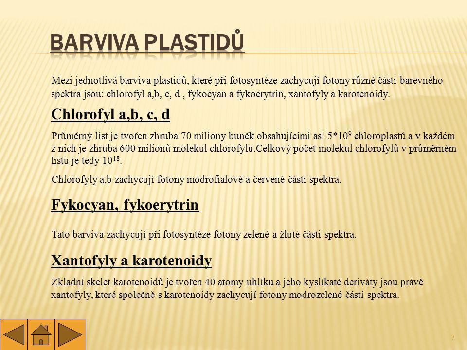 8 fotofosforylace fotolýza vody
