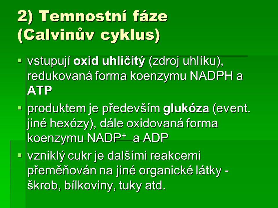 2) Temnostní fáze (Calvinův cyklus)  vstupují oxid uhličitý (zdroj uhlíku), redukovaná forma koenzymu NADPH a ATP  produktem je především glukóza (e