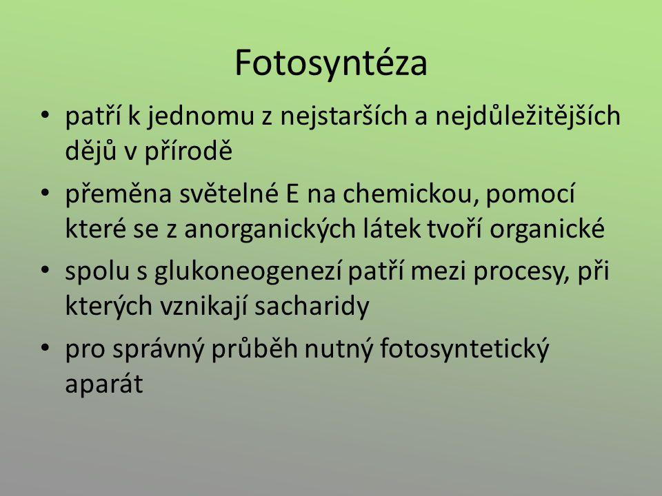 Fotosyntéza patří k jednomu z nejstarších a nejdůležitějších dějů v přírodě přeměna světelné E na chemickou, pomocí které se z anorganických látek tvo